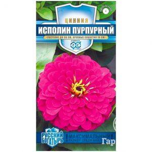 Семена Цинния Великан пурпурный