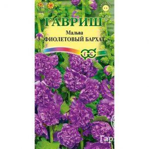 Семена Мальва Фиолетовый бархат 0