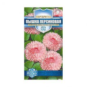 Семена Маргаритка Пышка персиковая 5 шт