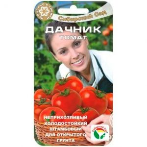 Семена Томат Дачник 20 шт